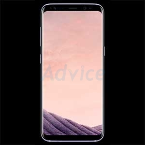 SAMSUNG Galaxy S8 (G950FD  Orchid Gray)