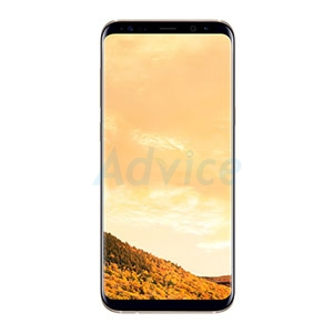 SAMSUNG Galaxy S8 Plus (G955FD  Maple Gold)